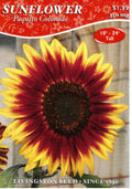 Paquito Colorado Sunflower