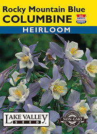 Rocky Mountain Blue Columbine