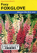 Foxy Mixed Colors Foxglove