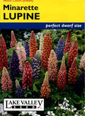 Minarette Lupine Mixed Colors