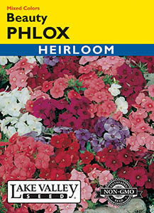 Beauty Phlox Mixed Colors