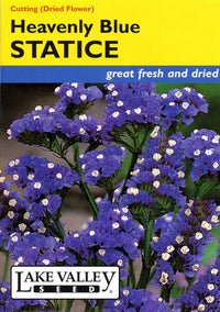 Heavenly Blue Statice