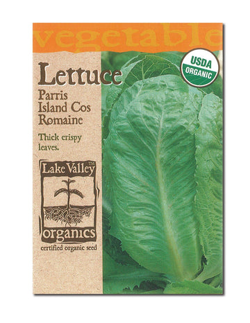 Paris Island Romaine Lettuce
