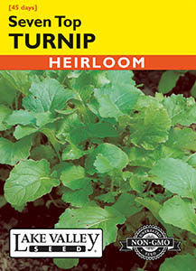 Seven Top Turnip