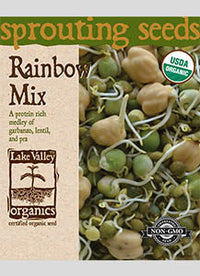 Sprouting Seeds - Rainbow Mix