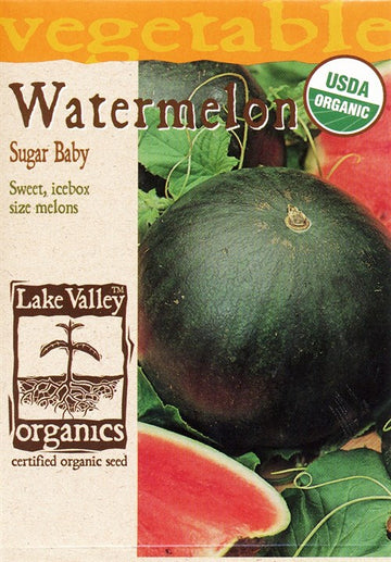 Watermelon - Sugar Baby