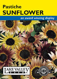 Pastiche Sunflower (pkt)