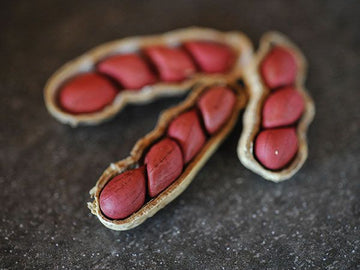 Tennessee Red Peanut