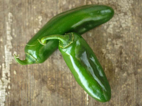 Nadapeno Pepper