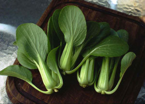 Pak Choi Green Fortune F1 Cabbage