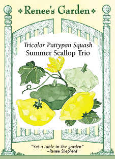 Summer Scallop Trio Squash