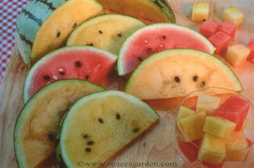 Rainbow Sherbet Trio Watermelon