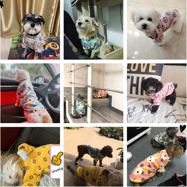 Cartoon Print Cute Pet Clothes for Small Dogs and Cats