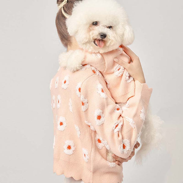 matching dog and owner sweaters