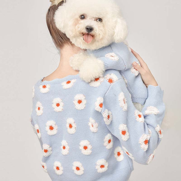 matching dog and owner sweaters in blue color