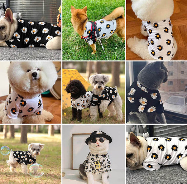 Puppy Pet Clothes Fashion Clothing For Small Medium Dogs Pets Clothing Cat Dog Coat Jacket