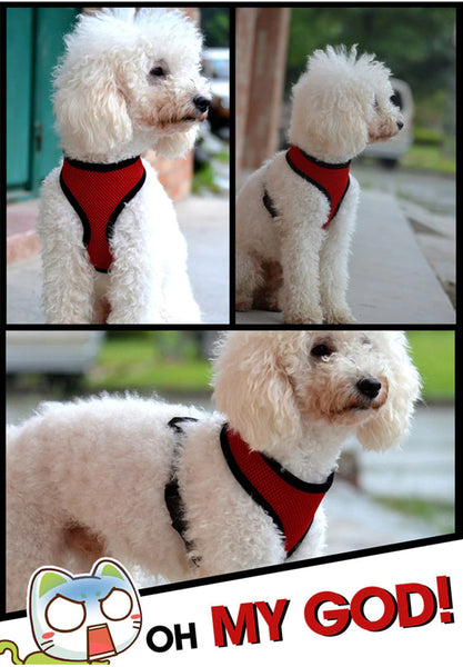 Soft Mesh Harness For DogsWith Chest Strap