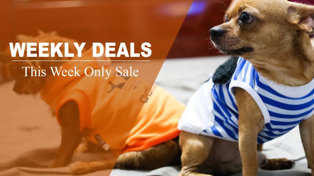 Weekly Deals on pet accessories