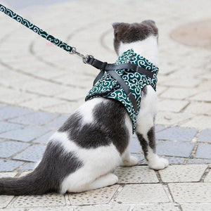 (BUY 2 FREE SHIPPING)Cat Vest Harness and Leash Set to Outdoor Walking