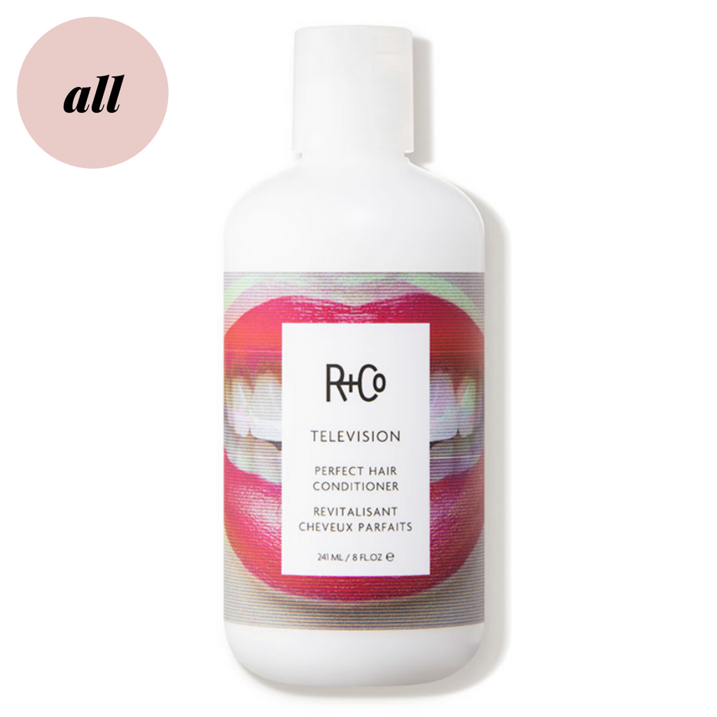 R+Co Television Perfect Hair Conditioner|The Tress Cllub