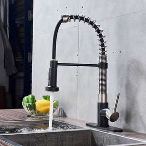 Black and Nickel Pull Down Kitchen Faucet 360 Rotating - Hansel & Gretel Home Decor