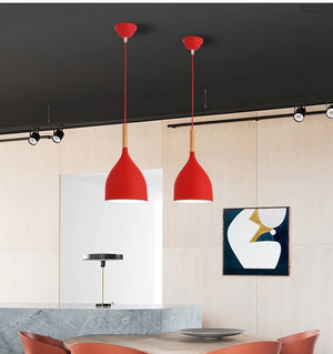 Modern Red Hanging Lamp - Hansel & Gretel Home Decor