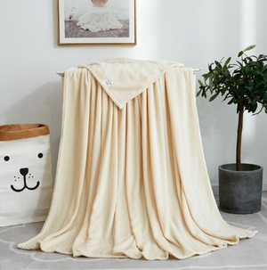 France Velvet White Blanket - Hansel & Gretel Home Decor