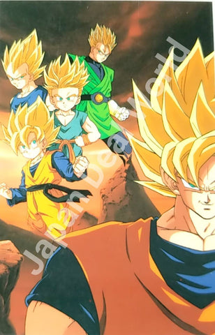 DRAGON BALL RAMI CARD 0794G-A