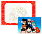 DRAGON BALL Ichiban-kuji HISTORY OF RIVAL (E) MEMORIAL ART PLUS GENGA ART Full Set (8+8 Pictures)