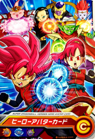 DRAGON BALL HEROES HERO AVATAR CARD