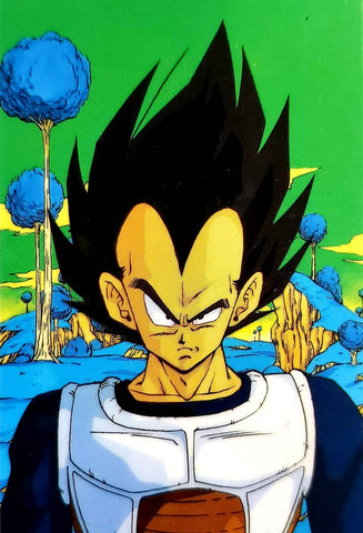 DRAGON BALL RAMI CARD 0691C