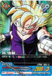 DRAGON BALL DATA CARDDASS PE-008-II