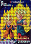 DRAGON BALL PP CARD 01172