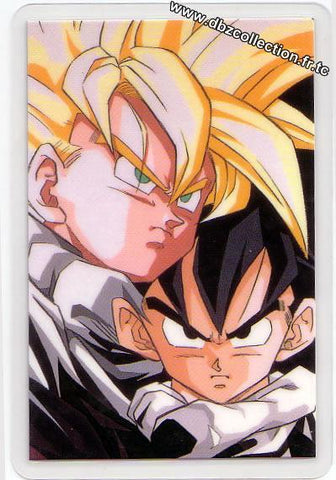 DRAGON BALL RAMI CARD -D 0393G