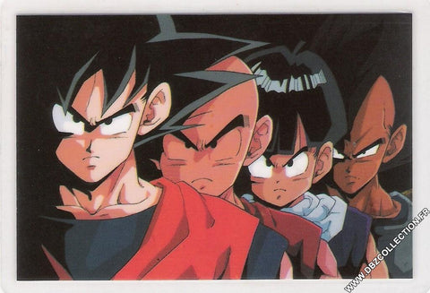 DRAGON BALL RAMI CARD 0391G D