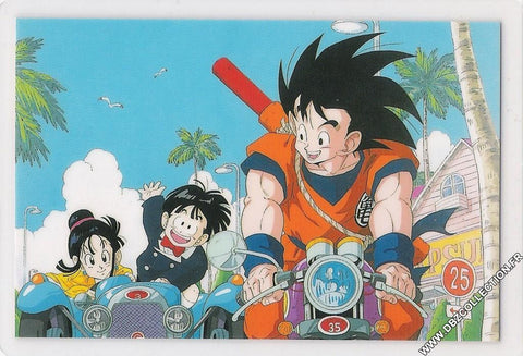 DRAGON BALL RAMI CARD 0791G A