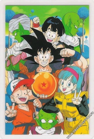 DRAGON BALL RAMI CARD 0791G E