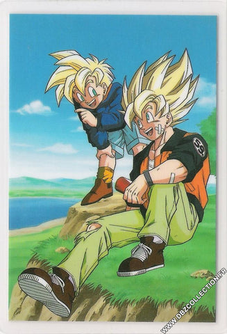 DRAGON BALL RAMI CARD 0793G-B