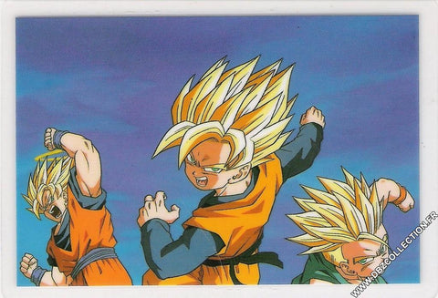 DRAGON BALL RAMI CARD 0794G E
