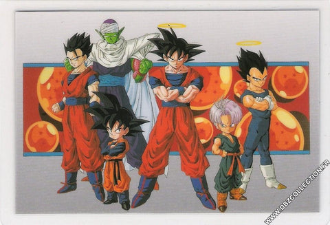 DRAGON BALL RAMI CARD 0295-A
