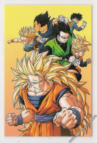DRAGON BALL RAMI CARD 0795G-B