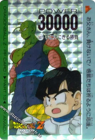 DRAGON BALL PP CARD 00507