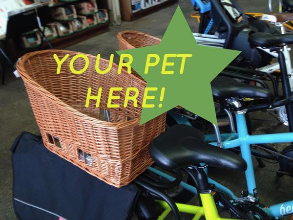 Back In Stock: Basil Pasja Pet Baskets & Space Frames