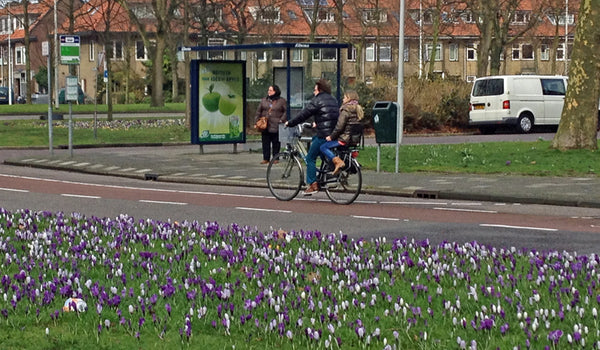 Parent and child riding on bike past flowers
