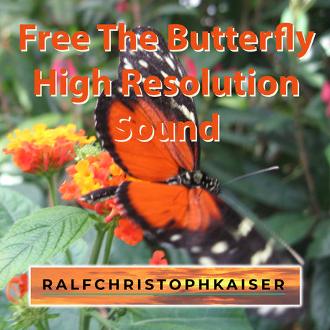 New electronica EP Free The Butterfly in High Resolution Sound by Ralf Christoph Kaiser available now