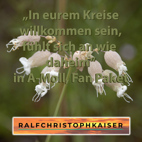 "neuer moderne Klassik Hit: ""In eurem Kreise willkommen sein, fühlt sich an wie daheim"" by Ralf Christoph Kaiser in A-Moll Fan Paket mit Full Score and Parts und High Resolution wav Files inklusive original Cover Foto und mp3"