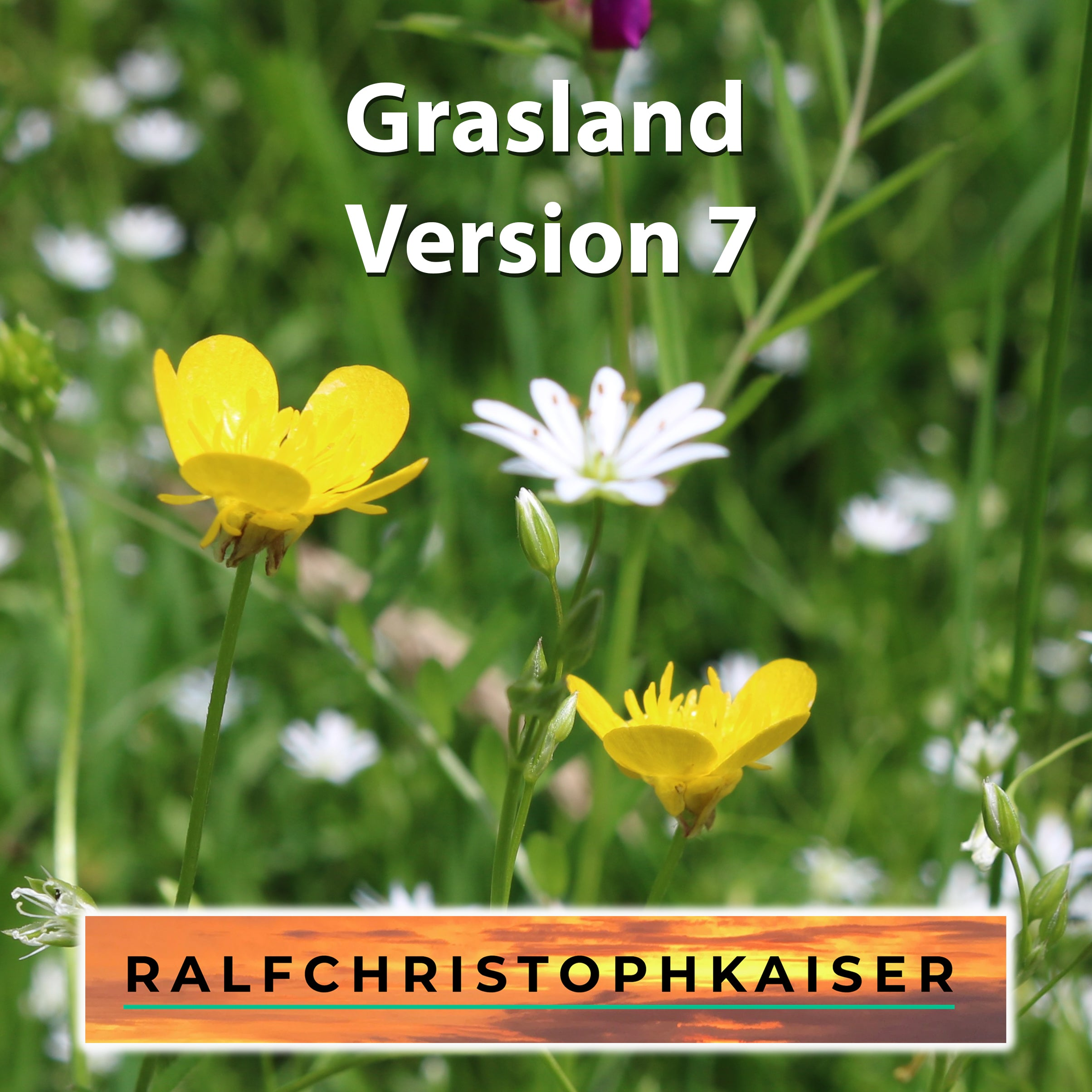 Grasslands in E minor Version 7 by Ralf Christoph Kaiser Full Score Leadsheet and Parts
