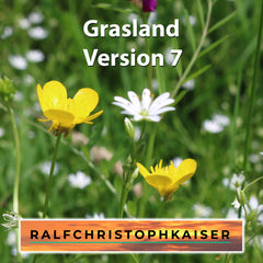 Grasland Version 7 high resolution wav file