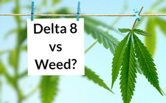 What is the difference between Delta 8 and Weed?