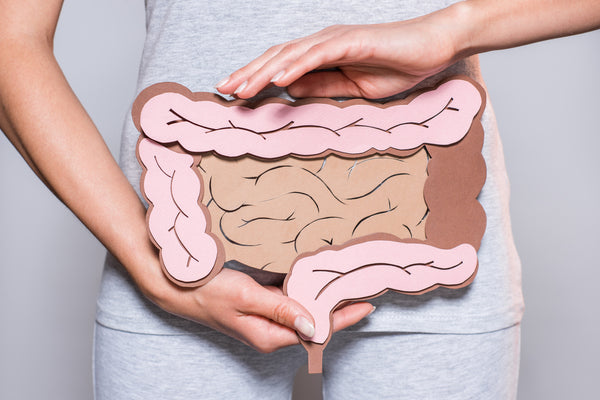 What Is A Leaky Gut?